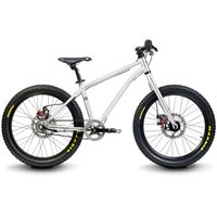 Early Rider Belter 20 Inch Trail 3 Speed Bike