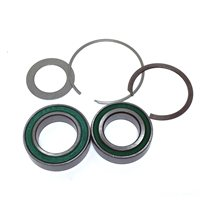 Mavic ID360 (Instant Drive 360) Kit Bearings - V2560101